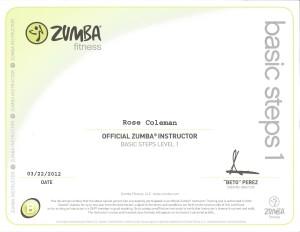 Zumba Basic Steps 1 Cert